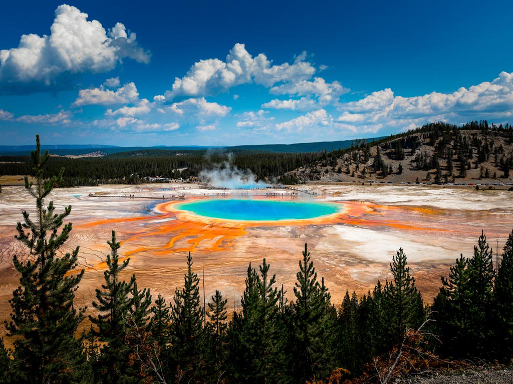 ✅ Sopa primitiva: el origen de la vida en nuestro planeta según la teoría  de Oparin