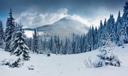 ¿Por qué la nieve es blanca?