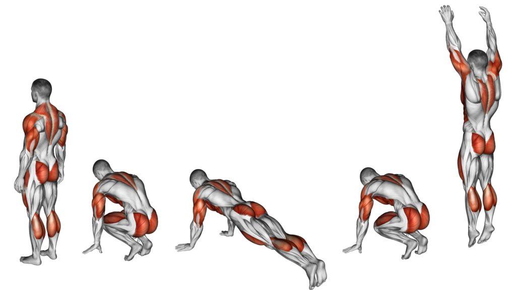 musculos burpees - Burpee, cómo hacerlo correctamente