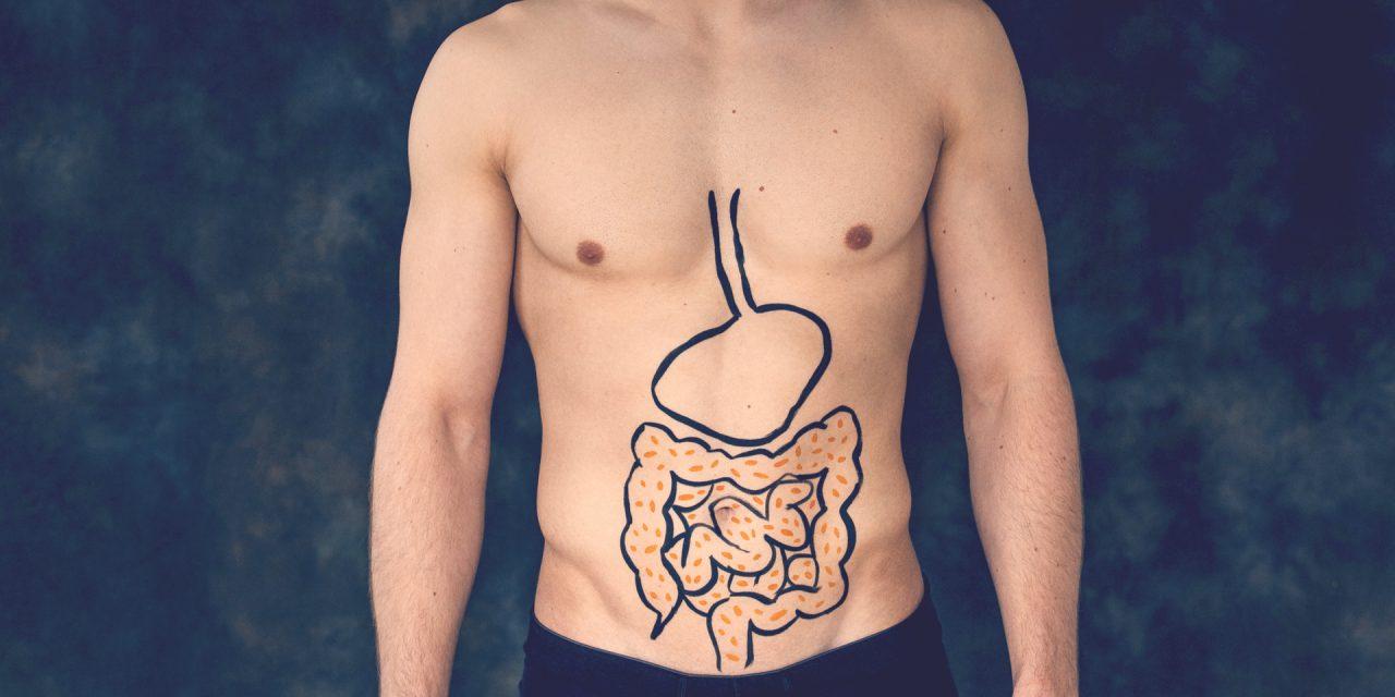 ¿Qué es la microbiota intestinal?