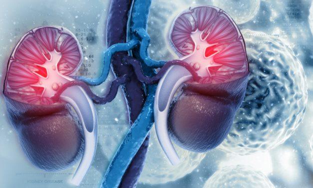 El ejercicio físico puede reducir un 22% el riesgo de padecer cáncer renal