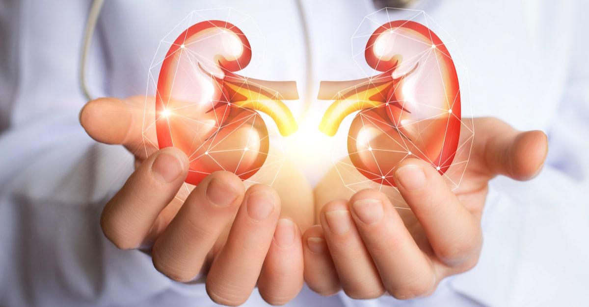 ALCER recuerda el fuerte impacto de la Covid-19 en los pacientes renales en el Día Mundial del Riñón