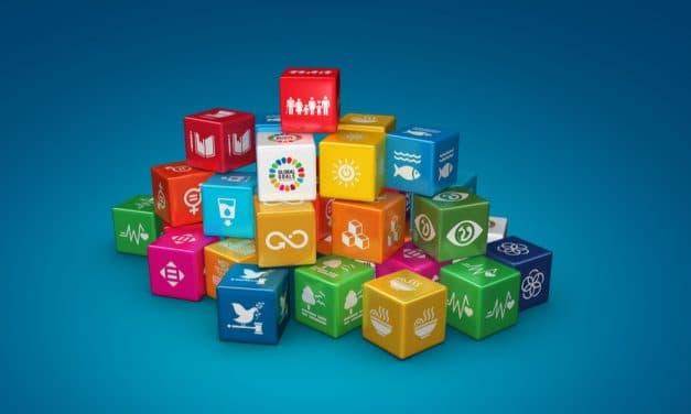 La Fundación IDIS subraya su compromiso con la Agenda 2030 de desarrollo Sostenible