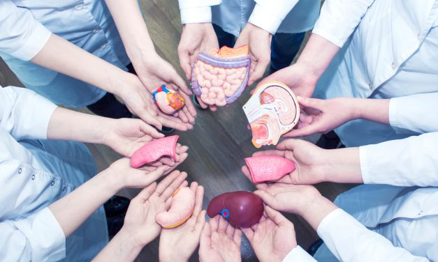 La Unión de Trasplantados de Órganos Sólidos celebra el Día Nacional del Donante de Órganos