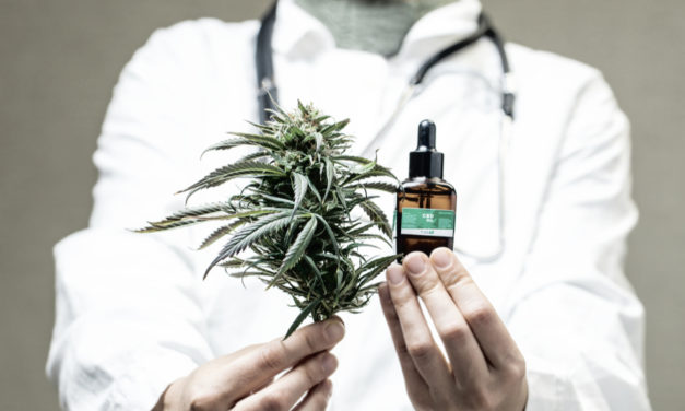 El Gobierno cree que el debate sobre la regulación del cannabis debe abordase desde la perspectiva sanitaria